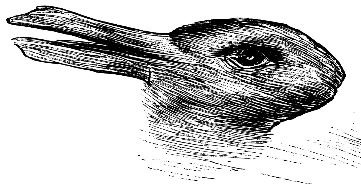 personality test - duck rabbit optical illusion