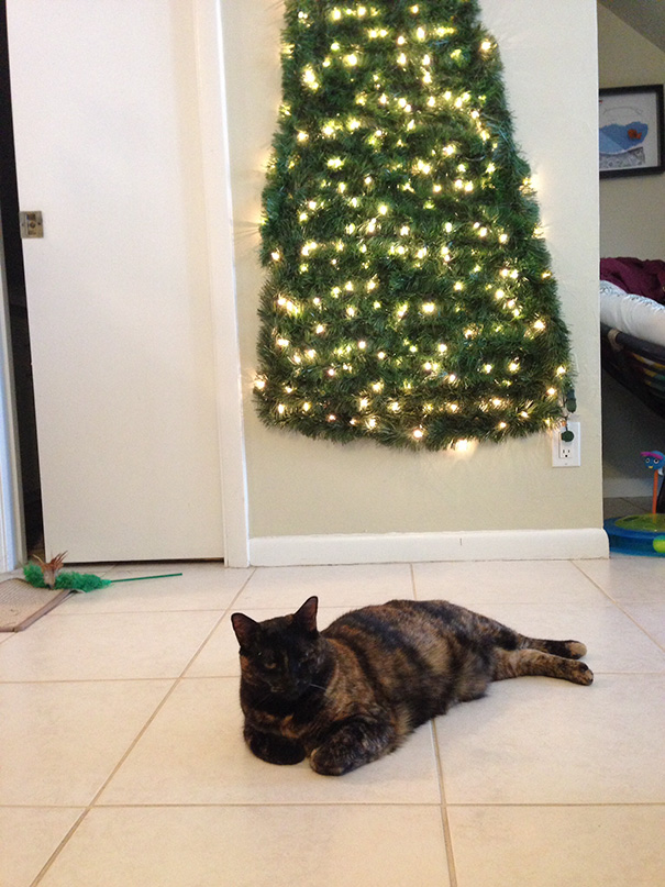 Protect christmas tree from cat